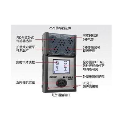 英思科MX6一氧化碳氣體探測器