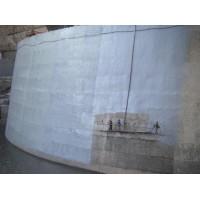 SJ208大型水利工程防水