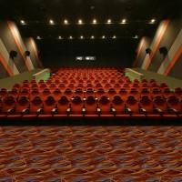Z0038系列-電影院/KTV/會所阿克明斯特羊毛地毯