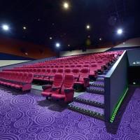 DYY01系列-電影院/辦公室/會議室/走道尼龍印花地毯