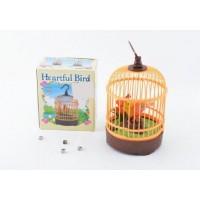 聲控鳥帶鳥籠,電動(帶燈光)