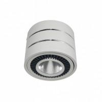 LED明裝筒燈一體式
