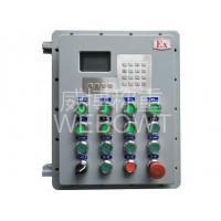 ID510配料控制箱 (隔爆)
