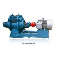 FSK水環式防腐真空泵