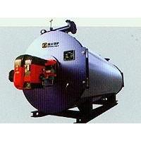 DZS燃生物質燃料蒸汽鍋爐