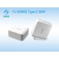 FJ-SW600 60W(充电器)