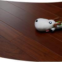 孪叶苏木实木地板
