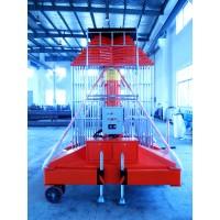 雙梯防轉式價格(升降機)