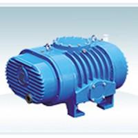 氣冷式直排大氣羅茨真空泵(真空設備)