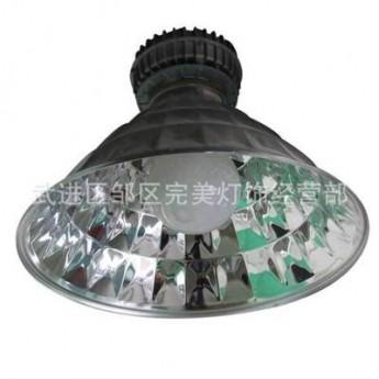 高頻無極燈 現代小型鋁型材庭院燈 戶外庭院燈批發