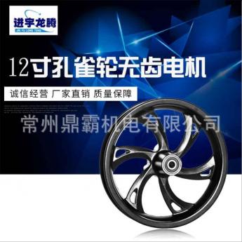廠家直銷12寸孔雀輪無齒電機 電摩電動車電動機