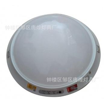 LED應急吸頂燈