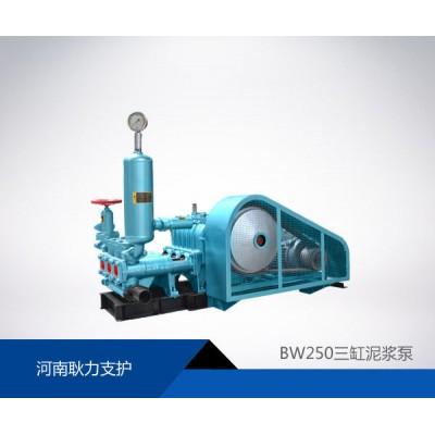 河南耿力厂家供应BW25
