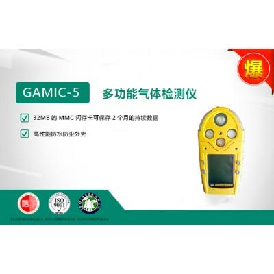 加拿大BW GAMIC-5系列多功能氣體檢測儀