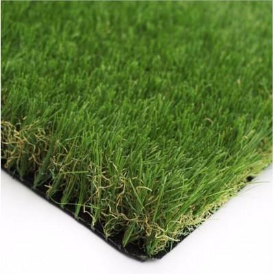 庭院綠化地毯草