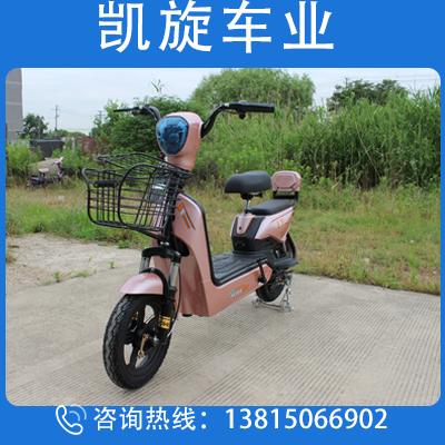 金鷹 國標電動車 外形新穎  廠家直營