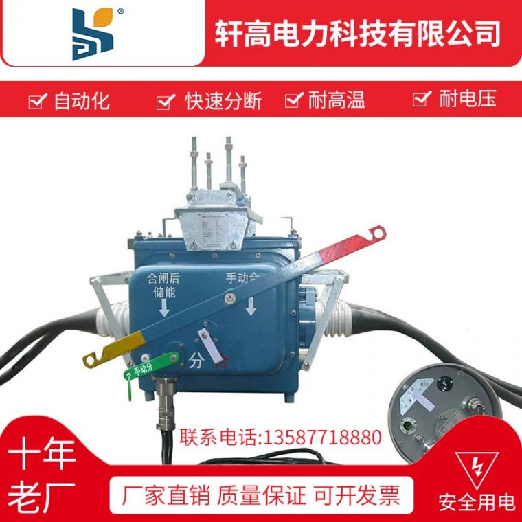 軒高廠家直銷FZW28戶外高壓真空斷路器批發定制