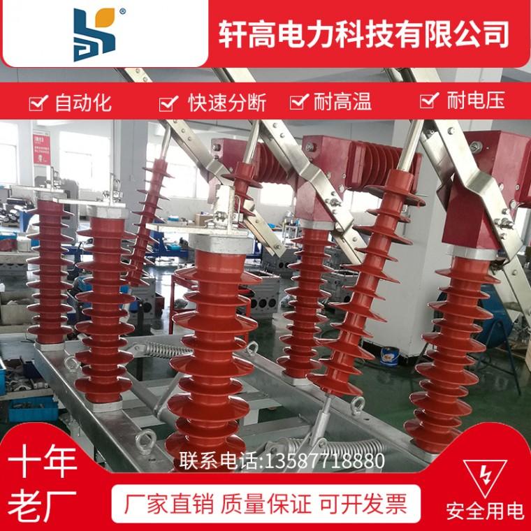 廠家直銷戶外高壓真空斷路器FZW32-12  630-25