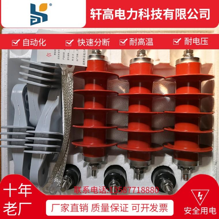 HY5WS-17 50DL GW5戶外高壓真空斷路器批發