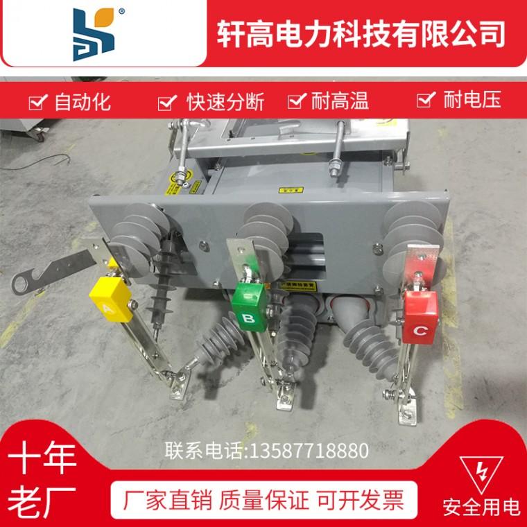 廠家直銷ZW20-12F  630-20 鐵殼高壓真空斷路器