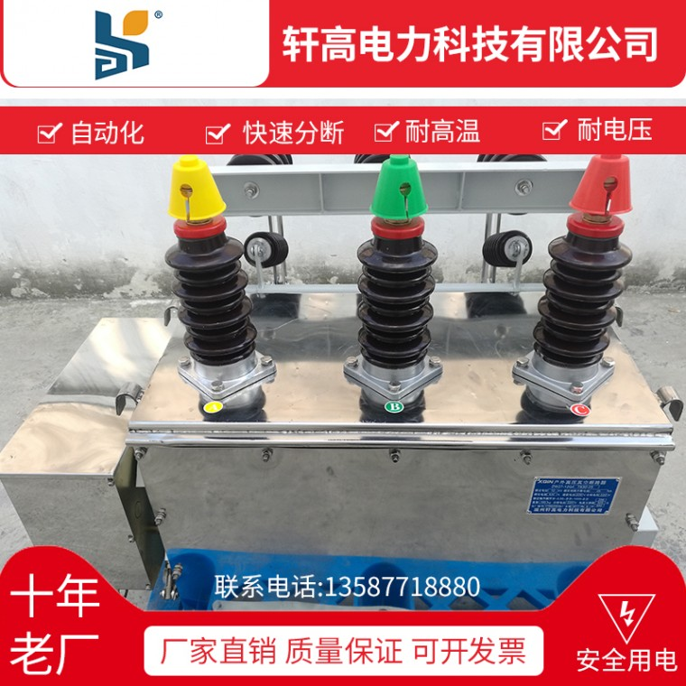 軒高批發高壓真空斷路器ZW27-12F  630-20斷路器