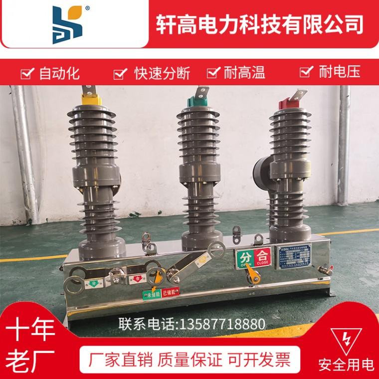 溫州廠家直銷ZW32-12  630-20高壓真空斷路器批發
