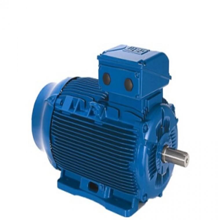 WEG万高-W22电机
