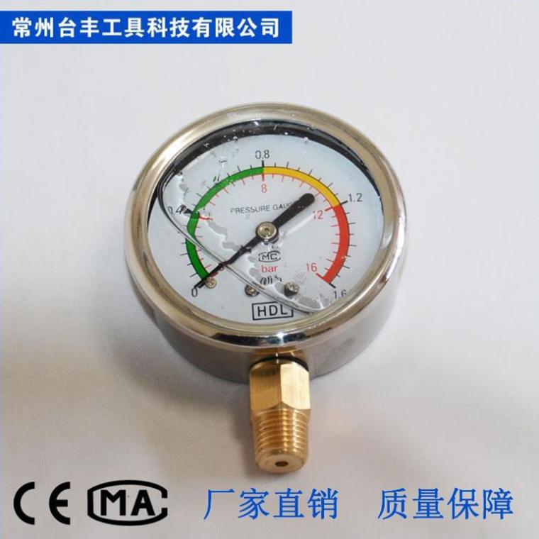 低壓Y63徑向耐震表