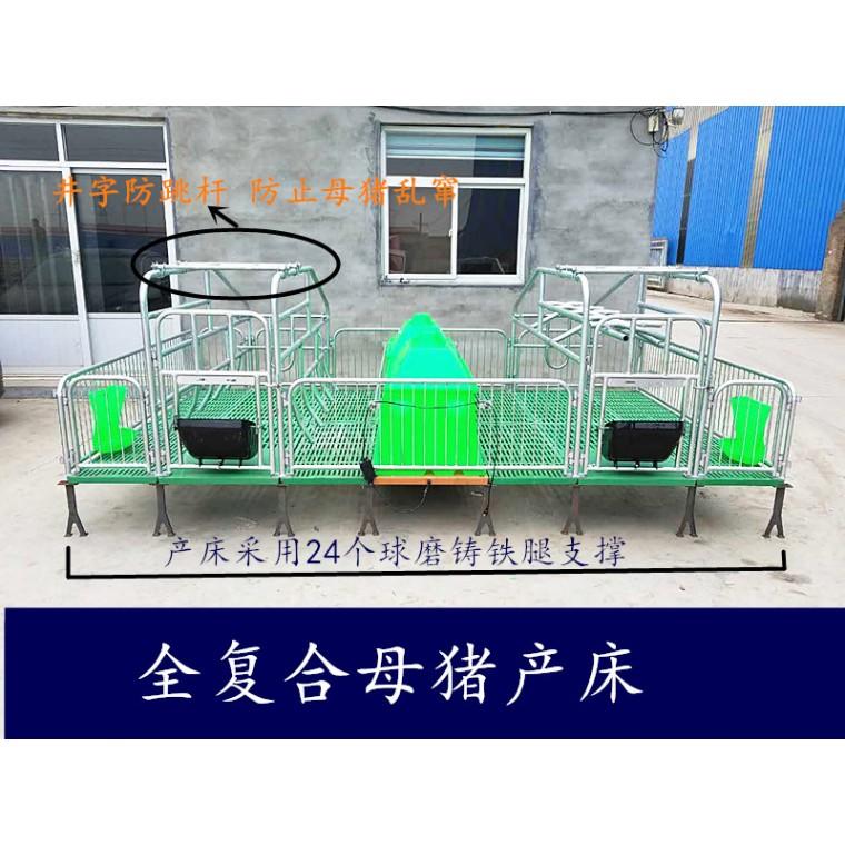 母猪产床 双体猪用床  新型养猪设备  厂家直销