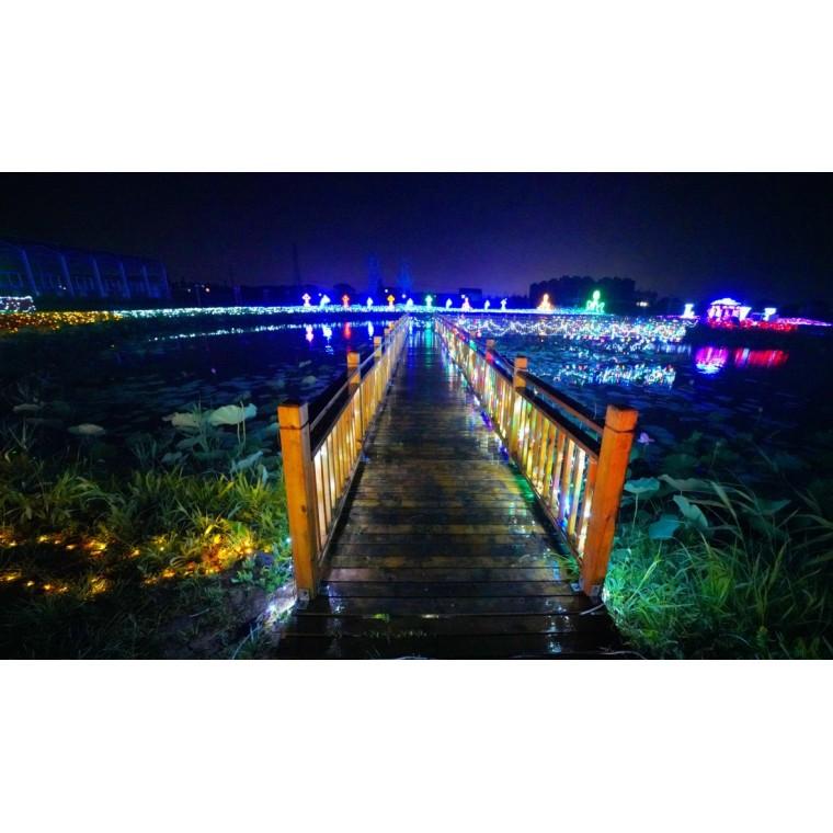 专业生产灯光节产品新春梦幻灯光节制作工厂