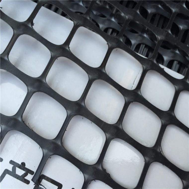 源头厂家路基路面增强用塑料土工格栅高强度抗老化双向塑料网
