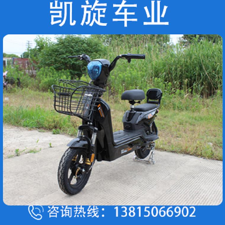 金鷹新國標電動車鉛酸電池小型電瓶車男女代步車 凱旋車業廠家