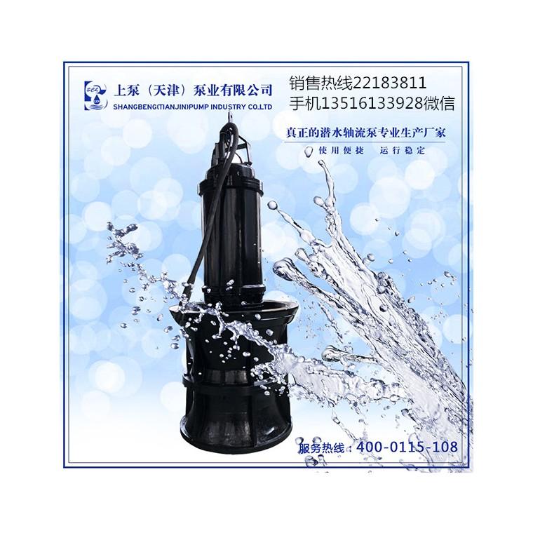 北京順義耦合式潛水軸流泵
