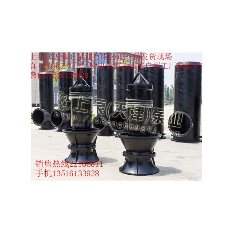 江蘇泰州潛水軸流泵型號