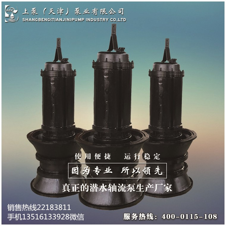江西新余潛水軸流泵廠家