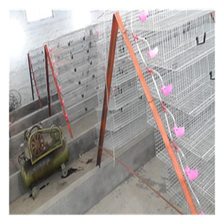 梯形鹌鹑养殖笼具