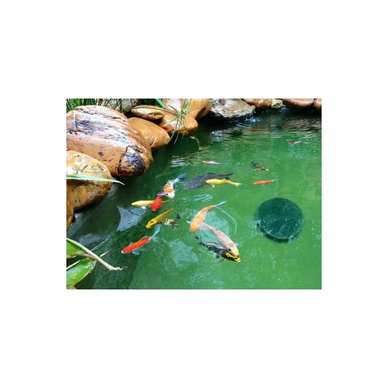 漁悅 循環水養蝦 污水生物處理 流沙過濾器
