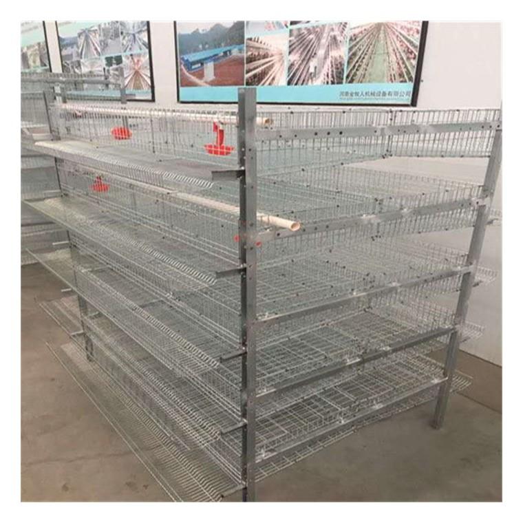 梯形鵪鶉養殖籠具廠家