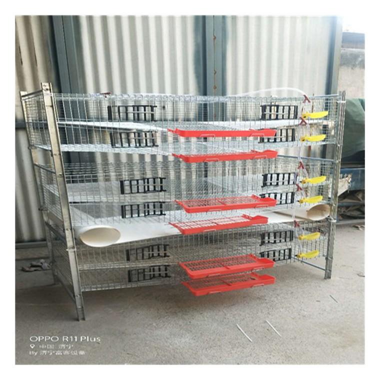 优质供应梯形鹌鹑养殖笼具