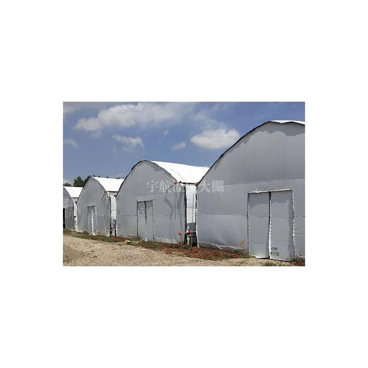 單體溫室大棚