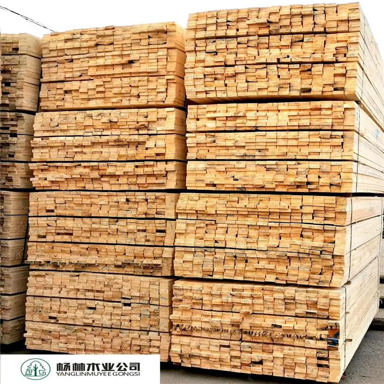 建筑木方輻射松廠家