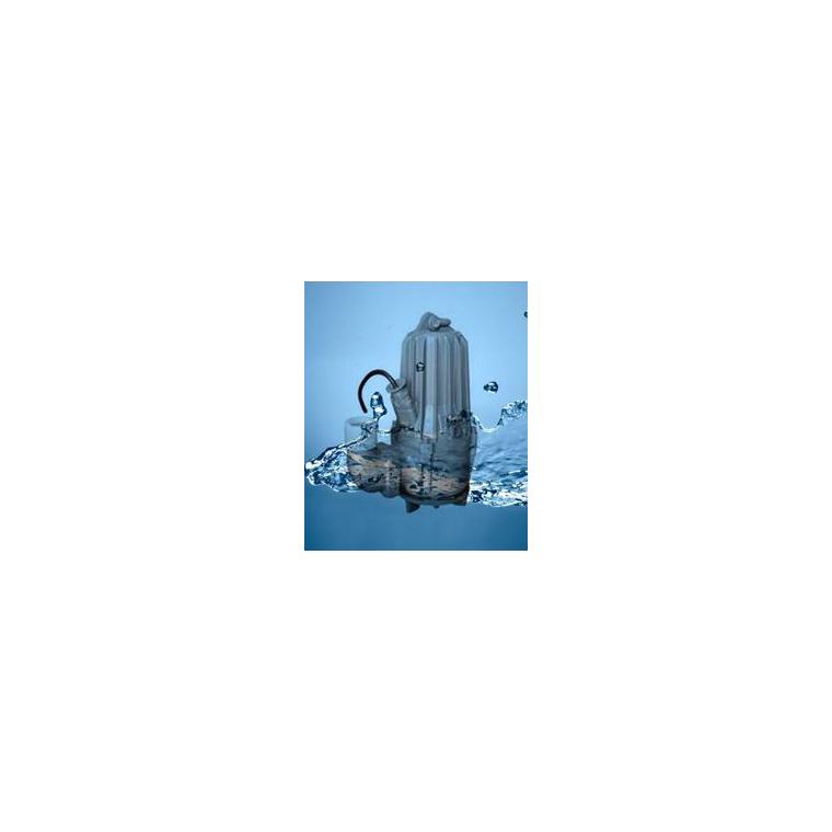 南京藍深制泵集團WQ10-10-1污潛泵 含自耦裝置