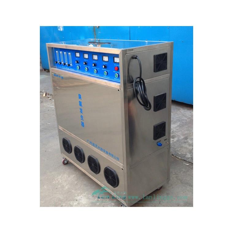 漁悅 大型 臭氧發生器 含制氧機和冷干機