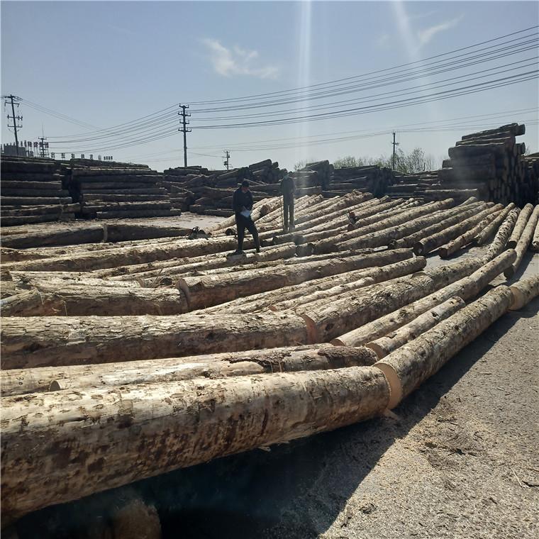 供應原木建筑方木