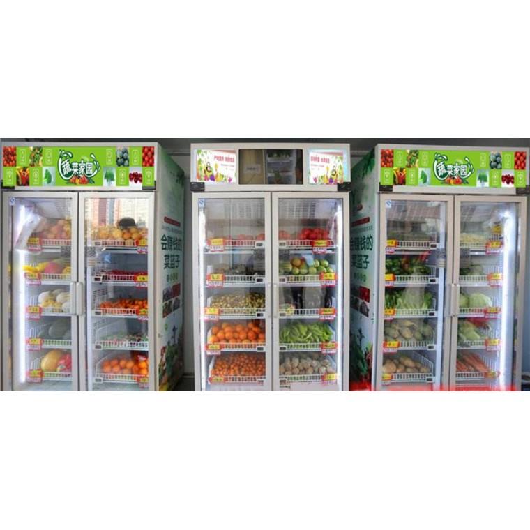 廣州蔬菜水果無人自動售貨機廠家