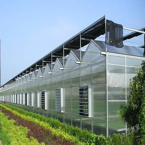遼寧模塊溫室大棚