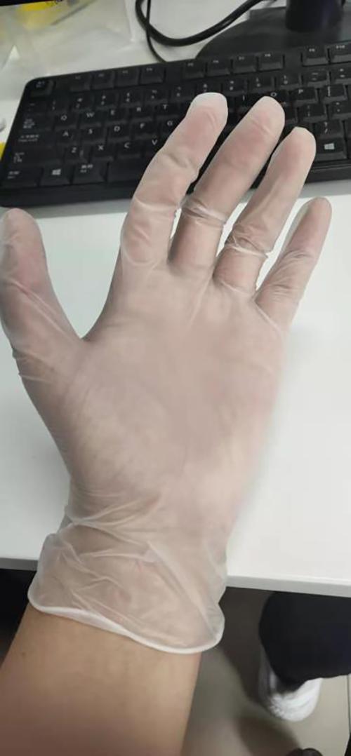福建一次性手套pvc