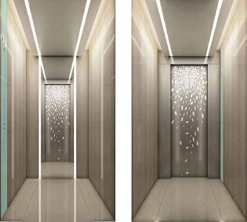 天津家用別墅小型電梯