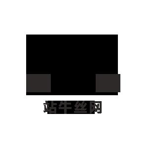 河北站牛絲網制品有限公司