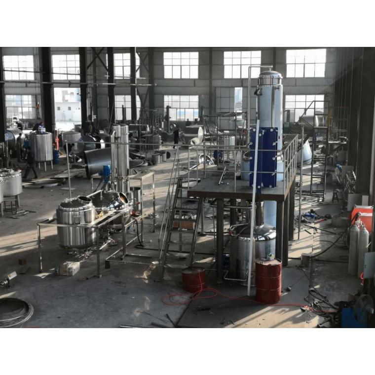 不锈钢小型实验室多功能中药提取浓缩设备